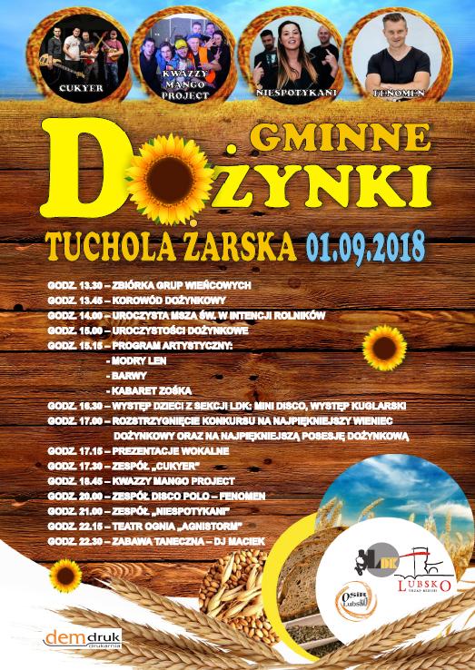 Ilustracja do informacji: Dożynki Gminne Tuchola Żarska - 1.09.2018