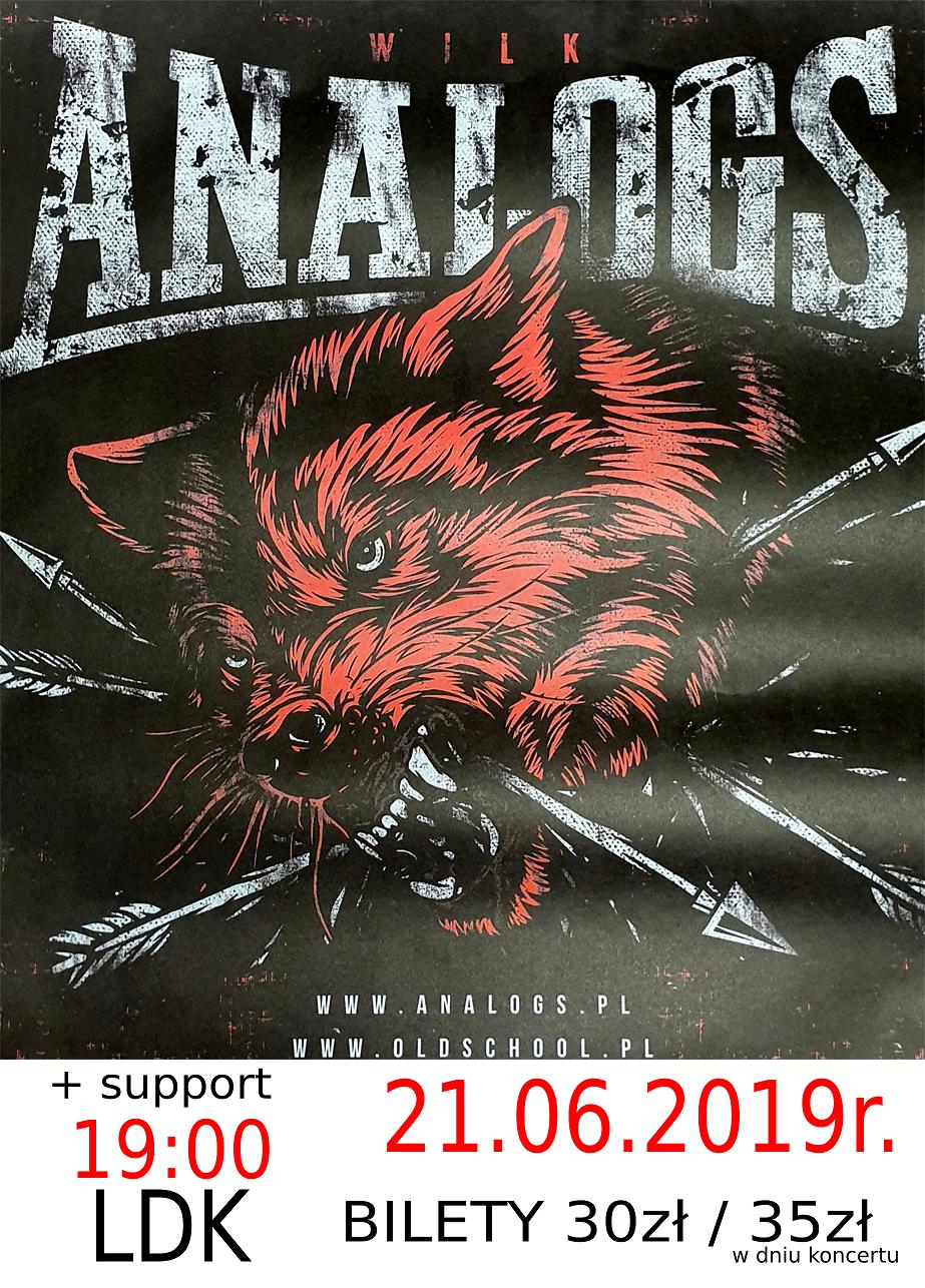 Ilustracja do informacji: Koncert ANALOGS